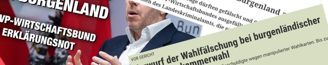 Wahlbetrug WKO WK-Wahlen