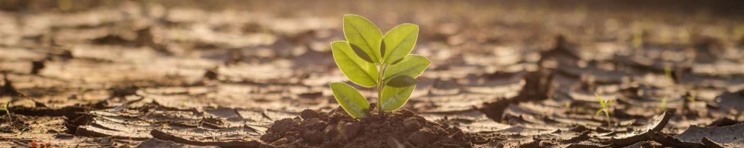 Antrag Unterstuetzung Klimaschutzpolitik Wirtschaftskammer