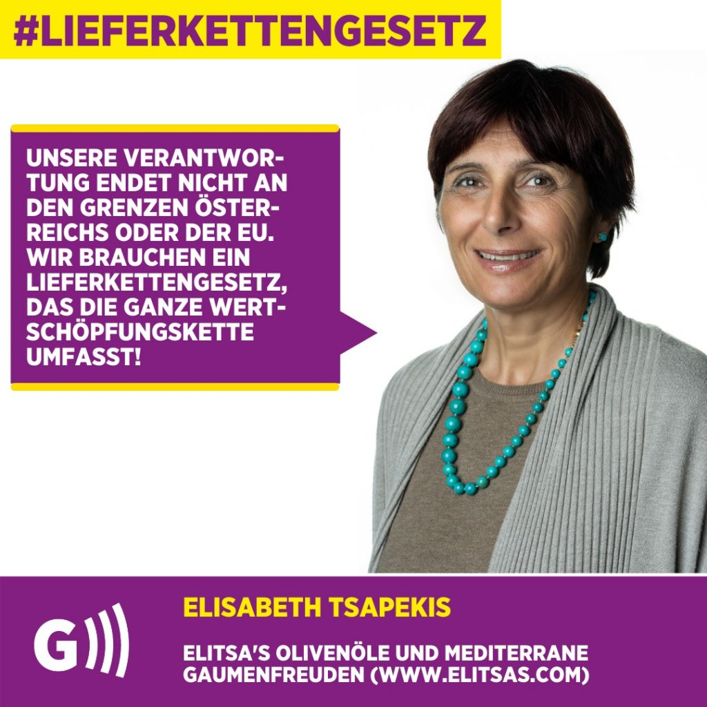 Lieferkettengesetz Elisabeth Tsapekis